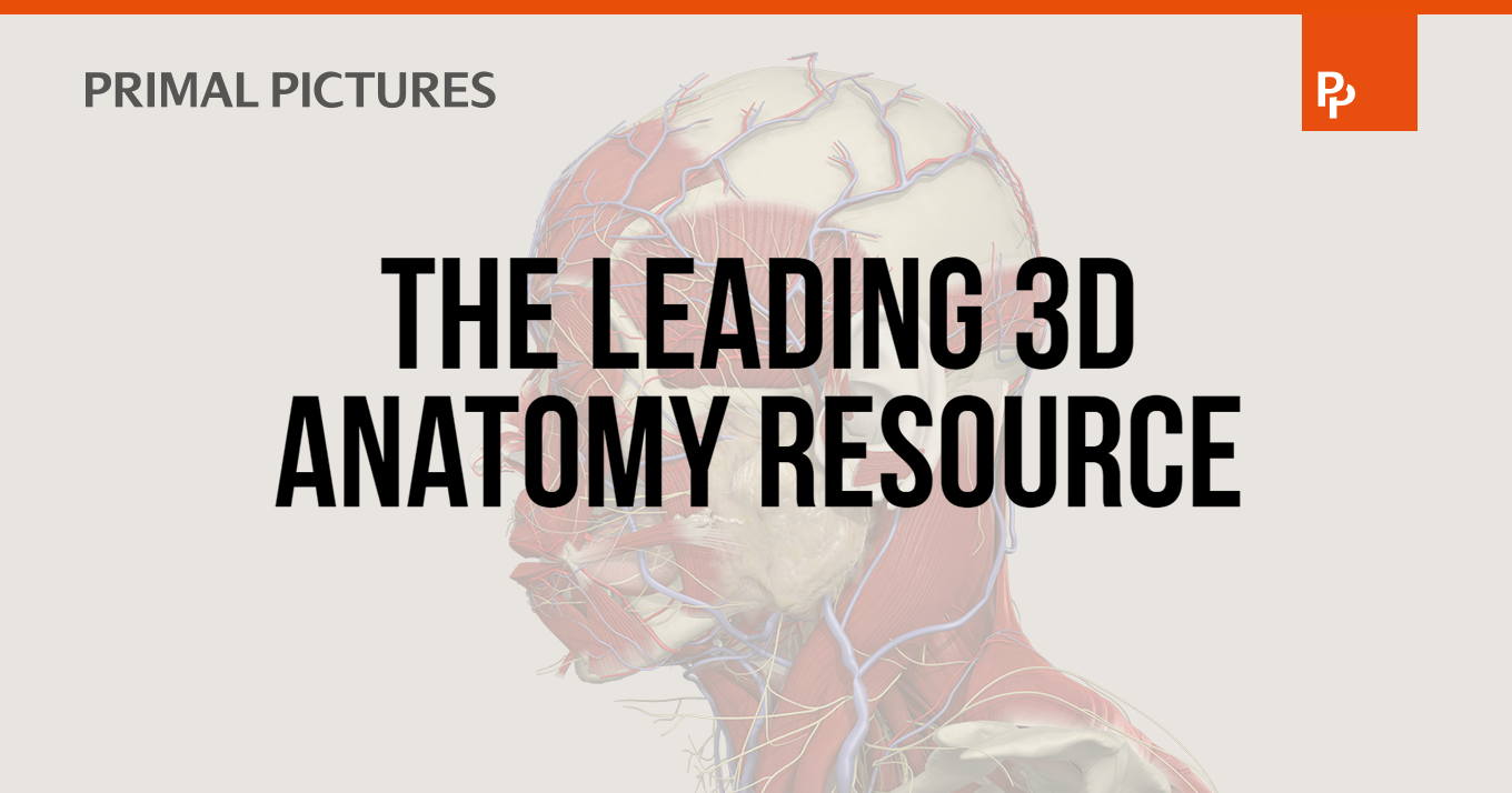 Primal Pictures | 3D Anatomy Software